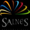 logotipoSalnes